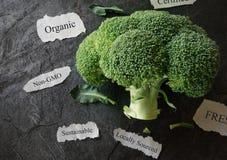 Collage des légumes frais Photographie stock libre de droits