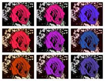 Collage des roses illustration stock
