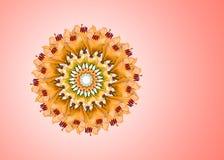 Collage di bei fiori arancio del giglio su un fondo rosa con lo spazio della copia immagini stock libere da diritti