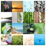 Collage di belle immagini differenti fotografia stock