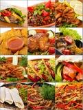Collage di carne assortita o del primo piano dei piatti di pesce Immagine Stock