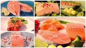 Collage di color salmone di ricette archivi video