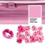 Collage di colore d'avanguardia delle foto degli alcoolici affini di rosa 14-2311 rosa del prisma di anno 2018 con ultravioletto  Immagini Stock Libere da Diritti