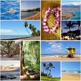 Collage di corsa dell'Hawai Fotografie Stock