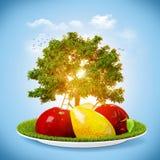 Collage di estate Fotografie Stock