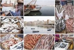 Collage di industria della pesca Fotografia Stock Libera da Diritti