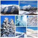 Collage di inverno Fotografia Stock Libera da Diritti