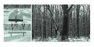 Collage di inverno Fotografia Stock