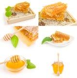 Collage di miele Immagine Stock Libera da Diritti