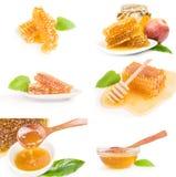 Collage di miele dolce Fotografia Stock