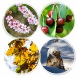 Collage di quattro stagioni - insegne del cerchio isolate su backgroun bianco Fotografia Stock Libera da Diritti