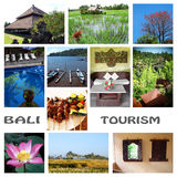 Collage di turismo del Bali immagine stock