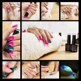 Collage di un manicure fantastico Fotografie Stock