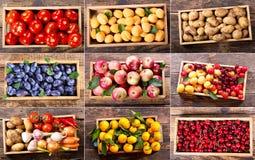 Collage di varie frutta e verdure in scatole di legno Fotografie Stock Libere da Diritti