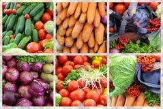 Collage di varietà della verdura fresca Immagine Stock