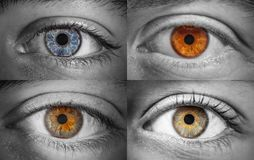 Dfferent colored eye Stock Image