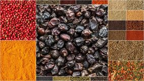 Collage of different herbs and spices background. Royalty Free Stock Photo