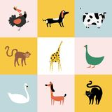 Collage of different kinds of animals Royalty Free Stock Image