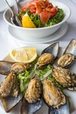 Collage from different photos of delicious seafood stock photography