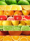 Collage of different ripe citrus fruits as background. Closeup royalty free stock images