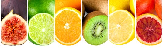 Collage of different ripe exotic fruits panorama. Collage of different ripe exotic fruits, cut figs, lime, orange, kiwi, lemon and grapefruit, panorama royalty free stock images