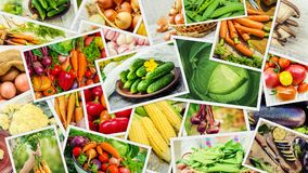 Collage of different vegetables. Vegetarian food Royalty Free Stock Image
