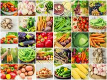 Collage of different vegetables. Vegetarian food Royalty Free Stock Photography