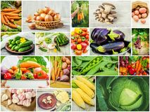 Collage of different vegetables. Vegetarian food Stock Photo