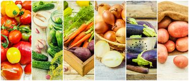 Collage of different vegetables. Vegetarian food Stock Photos