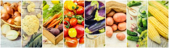 Collage of different vegetables. Vegetarian food Stock Images
