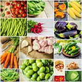 Collage of different vegetables. Vegetarian food. Selective focus. nature Stock Photos