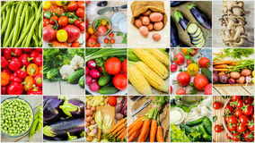 Collage of different vegetables. Vegetarian food. Stock Images