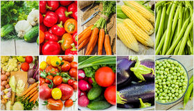 Collage of different vegetables. Vegetarian food. Stock Photos