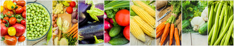 Collage of different vegetables. Vegetarian food. Stock Photo