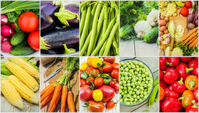 Collage of different vegetables. Vegetarian food. Royalty Free Stock Photography