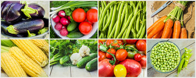 Collage of different vegetables. Vegetarian food. Royalty Free Stock Photos