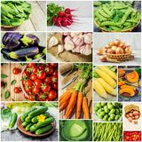 Collage of different vegetables. Vegetarian food. Selective focus. nature Stock Image