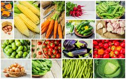 Collage of different vegetables. Vegetarian food. Selective focus. nature Stock Photo