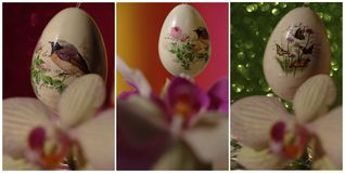 Collage with easter egg Stock Images