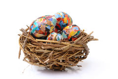 Collage eggs in nest Royalty Free Stock Image