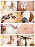 Collage of eight wedding photos. With bride Royalty Free Stock Images