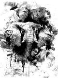 Collage of elephants. Illustration in black and white stock illustration