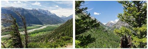 Collage en bois de forêt de vue de vallée de montagnes Photos libres de droits