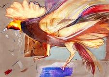 Collage en el papel del pájaro colorido del paraíso Imagen de archivo libre de regalías