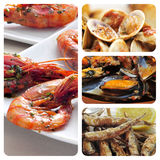 Collage espagnol de tapas de fruits de mer Images stock