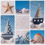 Collage för marin- liv Arkivfoto