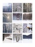 Collage Februar Stockfotos