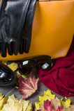 Flat lay set of  Feminine clothe  in autumn style. Collage of Feminine  clothing and accessories. shoes, scarf, gloves, bag and glasses  for autumn day in yellow Royalty Free Stock Photography