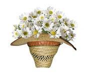 Collage - fiori in un cappello fotografia stock