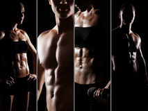 Collage of fit and sexy male and female bodies Stock Photography